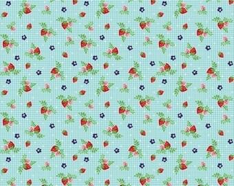 20% OFF Tasha Noel Vintage Market Strawberries Aqua