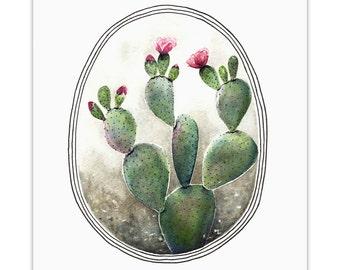 Cactus- Archival Print