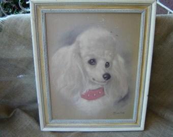 Vintage Poodle Picture Portrait Cottage Shabby French Farmhouse Paris Apartment