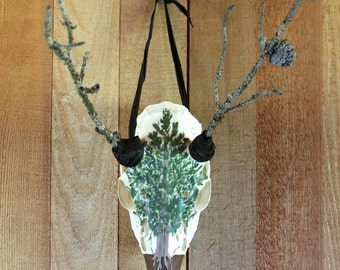 Pine - whitetail deer skull with pine branch antlers, painted shore pine, leather wraps assemblage pagan Horned God Cernunnos Herne