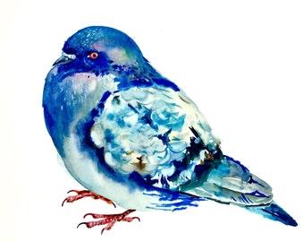 """Watercolor Painting, Original Art, Pigeon, 9""""x12"""""""
