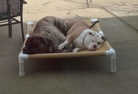 Big Dog Bed Holds Up To 200 Pounds Extra By Dianesk9creations