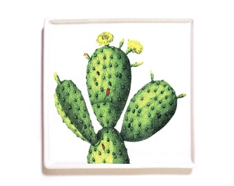 Cacti decoupage catch-all  valet tray