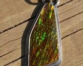 Canadian Ammolite Oxidized Pendant