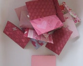 12 Assorted Valentines Mini Teeny Tiny Envelopes Notes, With Pink Scalloped edge Cards Tooth Fairy, Lunch box Notes