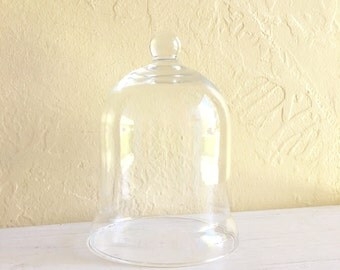 Curvy Clear Glass Cloche with Handle Decorative Dome