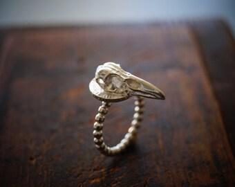 Raven Skull  Bronze Crow Skull Powerfull   Ring made in sterling 925 full bead  ring