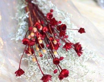 Brazilian Hill flowers-Small bunch of 30 assorted Dried flowers-Wedding flowers-Assorted Reds & Burgundies