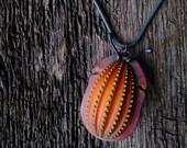 Coleoptera Pendant (orange)