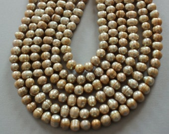 Sage Champagne Freshwater Pearl Strand - Length Drilled Full 16 Inch Strand - Unusual Color