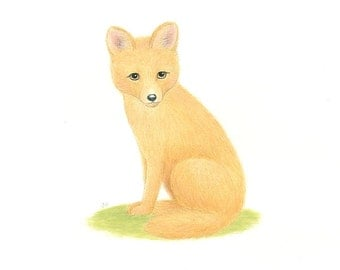 "FOX Painting Animal Art  Original 8 x 10"" by Sharon France  Nursery Art BABY FOX Illustration Wildlife Animal Painting  Childrens Art"