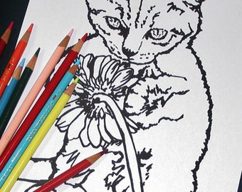2 pages Curious Playful Kitten Cat Coloring Page set of Two 1 Positive Inspiring quote