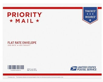 Priority Mail 6-10 day service  international flat rate envelope