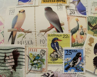 40 Bird Postage Stamps,  Postage Stamps, Used Stamps, Craft Stamps, World Wide