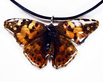 Real Butterfly Necklace - Painted Lady - Hand Cast Resin