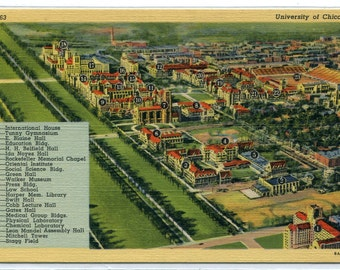University of Chicago Named Buildings Panorama Illinois 1940s linen postcard