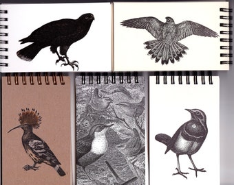Bird Notepad Pack