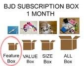 BJD Subscription Box:  FEATURE BOX