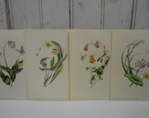 4 vintage Botanical prints Flower floral butterflies pictures Rudolf Lesch Fine Art NY Cottage garden French Country