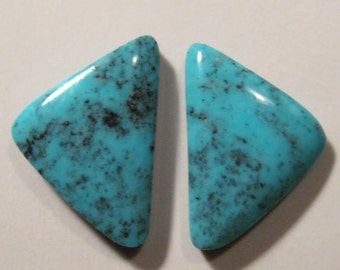 Campitos Turquoise cab set   ....  earring pair  ....  21 x 14  x 4 mm           ..... B3003