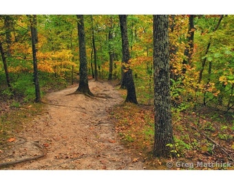 """Fine Art Color Nature Photography of Missouri - """"Limestone Bluff Trail in Early Autumn 1"""""""