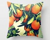Farmhouse Pillow Cover 18x18, Vintage Botanical Art, Grapefruit Pillow, Oranges Pillow, Farmhouse Kitchen Pillows Farmhouse Breakfast Nook