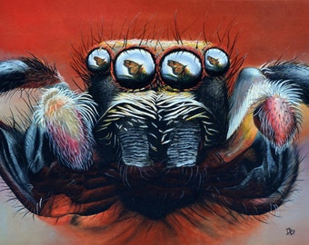 Longing - Jumping spider and butterfly pastel pencil drawing print