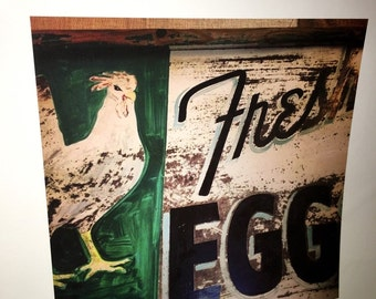 Original 8 by 8 photo on 14 by 14 paper vintage Fresh eggs sign chicken farm art farm series