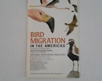 Bird Migration in the Americas, National Geographic map 1979