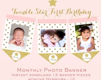 Twinkle Twinkle Little Star First Birthday Banner - Pink and Gold Star Monthly Photo Banner Star Month Circles Gold and Pink Pink and Gold