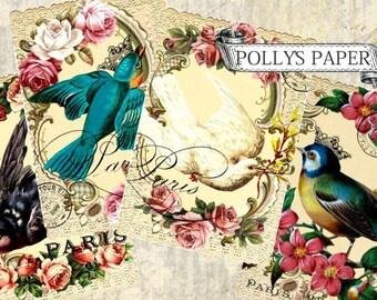 Bird Frame Collage Digital Images printable download file