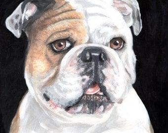 Bulldog Portrait Painting Dog Art