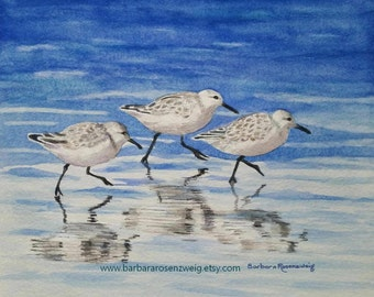 Coastal Art, Shore Bird Painting, Bird Print, Sandpiper Wall Art, Coastal Decor Beach, Beach Bird Watercolor Beach Wall Art Coastal Wall Art