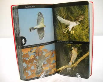 Bird Book The Aububon Society Field Guide To North American Birds FREE SHIPPING