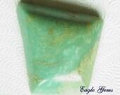 Nevada greenish  blue stabllzed Turquoise  9812