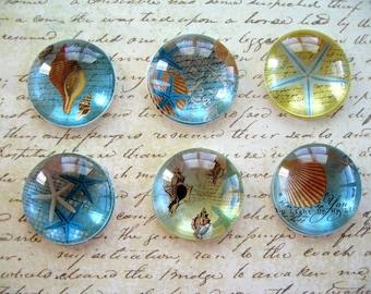 Ocean Blue Shell Sea Star Magnet, Ocean Shell Animal Fridge Magnet, Round Magnet, Blue Sea Style Magnet Set