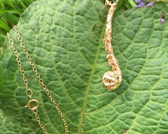 Fiddlehead Necklace, 18k gold plated