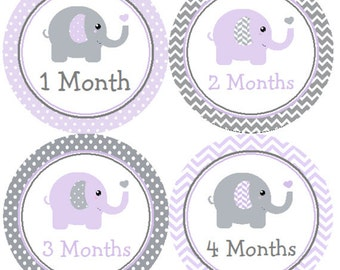 Baby Month Stickers Purple & Gray Elephant Monthly Belly Labels from 1 to 12 Months in Lavender Grey Chevron and Polka Dots for Baby Girl