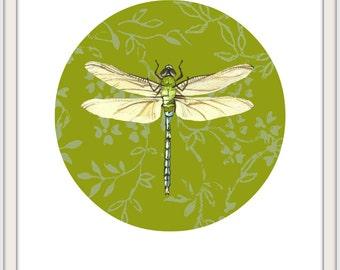 Dragonfly Print / Green Dragonfly