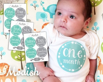 FREE GIFT, Gender Neutral Monthly Baby Stickers, Gender Neutral Month Stickers, Baby Month Stickers, Gender Neutral, Teal, Gray, Arrows