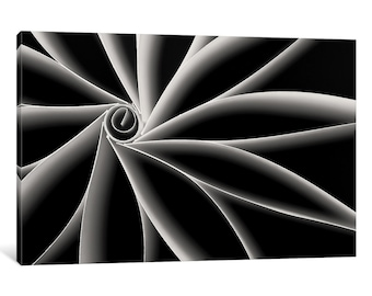 iCanvas Curves Gallery Wrapped Canvas Art Print by Daniel Swann