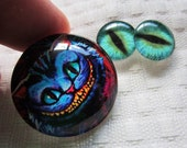 Cheshire Cat Pendant and earrings cabochon set for jewelry making