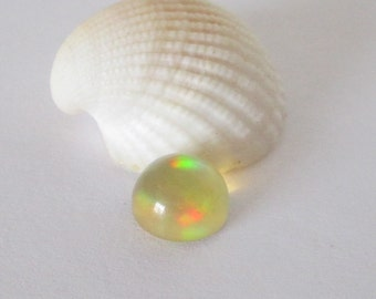 Ethiopian Welo Precious Opal 8mm Round Cabochon 1.95cts