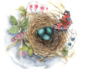 """Robin's Nest - Original Watercolor  - 10""""x10'' cottage bird eggs new life cabin nursery baby shower wild life nature turquoise butterfly"""