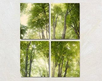Tree Photography Set of Four Prints, Green Nature Photograph Set, Retro Forest Artwork, Rustic Wall Art Set, Living room Decor