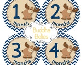 Moose Baby Month Stickers - Monthly Baby Stickers - Moose Baby Shower Gift - Month Baby Decals - Moose Nursery Gift - Baby Stickers Decals