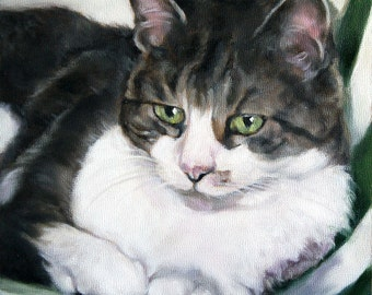 Custom Pet Portrait, Custom Pet Painting, Oil Painting Originals, 12x12, Animal Portraits