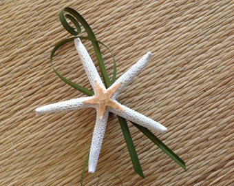 White Starfish Beach Boutonnière for Special Events with Magnet Backing for Linen Dress Shirts