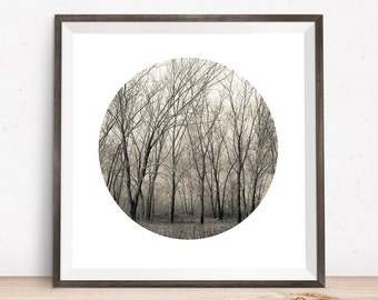 forest art, forest print, winter forest, dreamy forest, misty forest, foggy forest, forest poster, forest wall art, forest photography fog