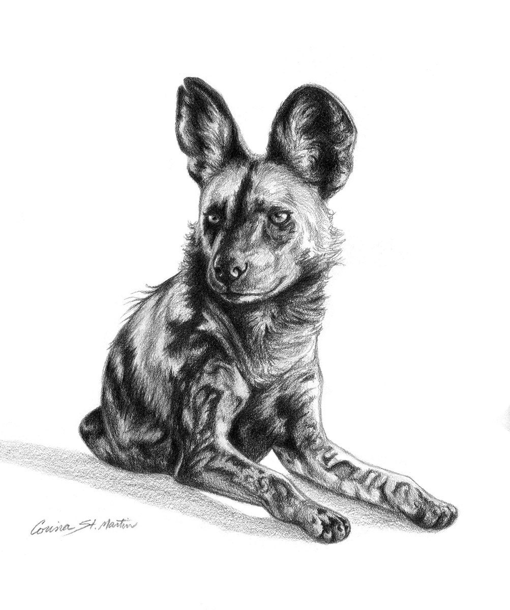 This is a picture of Monster African Wild Dog Drawing